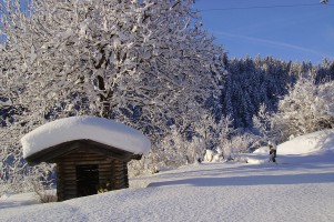 winter-fieberbrunn-landschaft